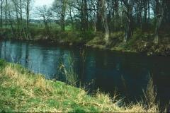 Lippe 1991